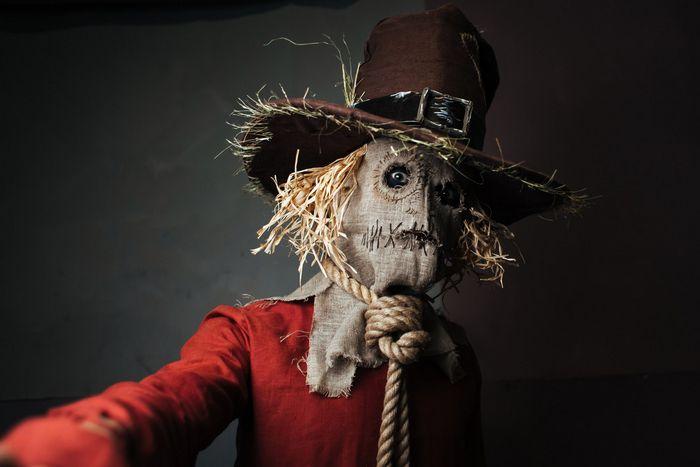 Безумные кошмары на фестивале старкон: хэллоуин