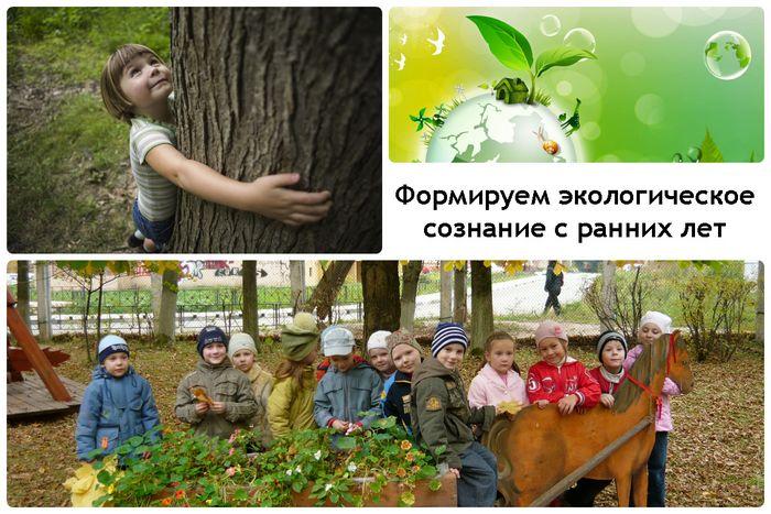 Экологическое воспитание детей. методы экологического воспитания.