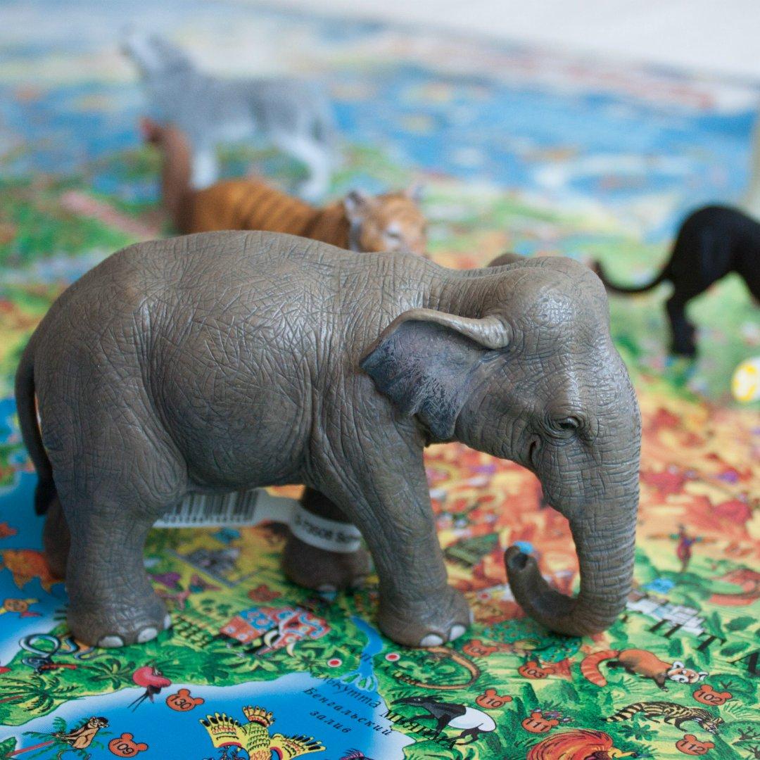 Мини-обзор фигурок животных от schleich