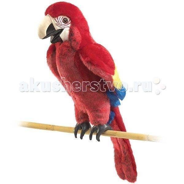 Попугай folkmanis