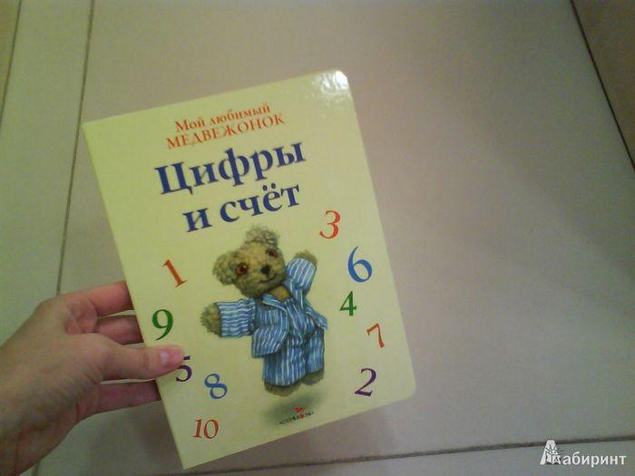 Серия книг old bear. мой любимый медвежонок