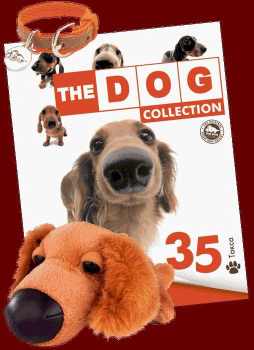The dog сollection - 36 выпуск - эрдельтерьер